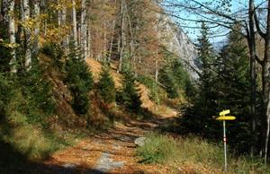 Wanderweg im Rofan